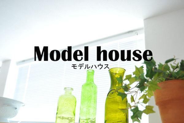 model-mobile